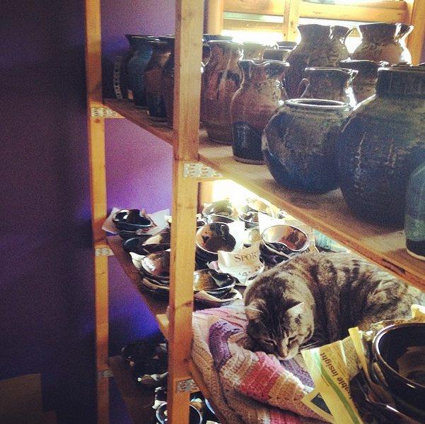 Prairie Fire Pottery, Joel Cherrico Pottery, studio cat
