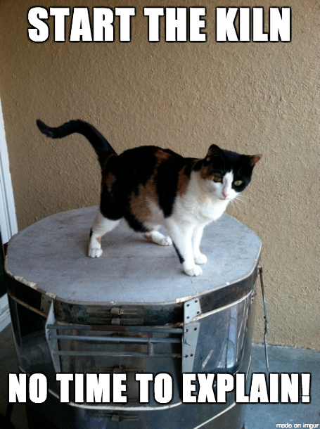 Image 20, my cat Rory on the kiln